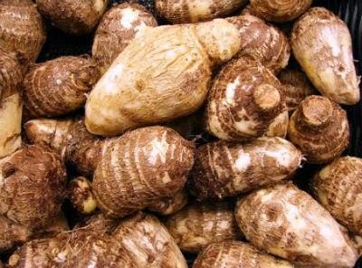 Arbi - Colocasia