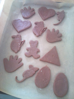 Childrens chocolate biscuits