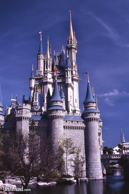 essays about disney world Walt disney world in lake buena vista, florida was established in 1971 today it receives over millions of families visiting its parks each year walt.
