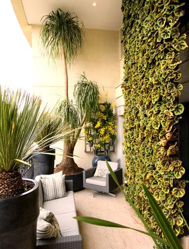 Plantas em apartamento mini hortas e plantas em apartamentos - Decoracion de balcones con plantas ...