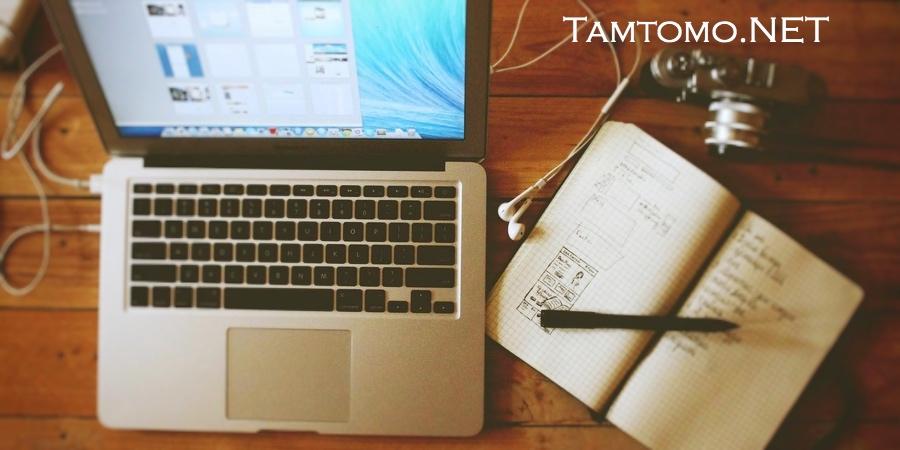 TamtomoVision
