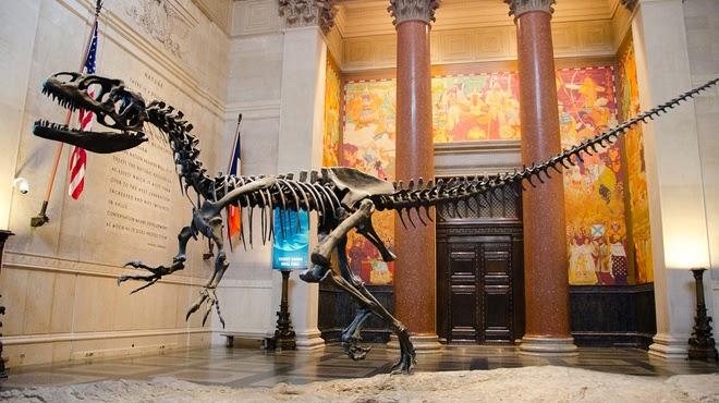 Crianças em Nova York | Museu História Natural