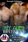 My Boyfriend Is...Book 3