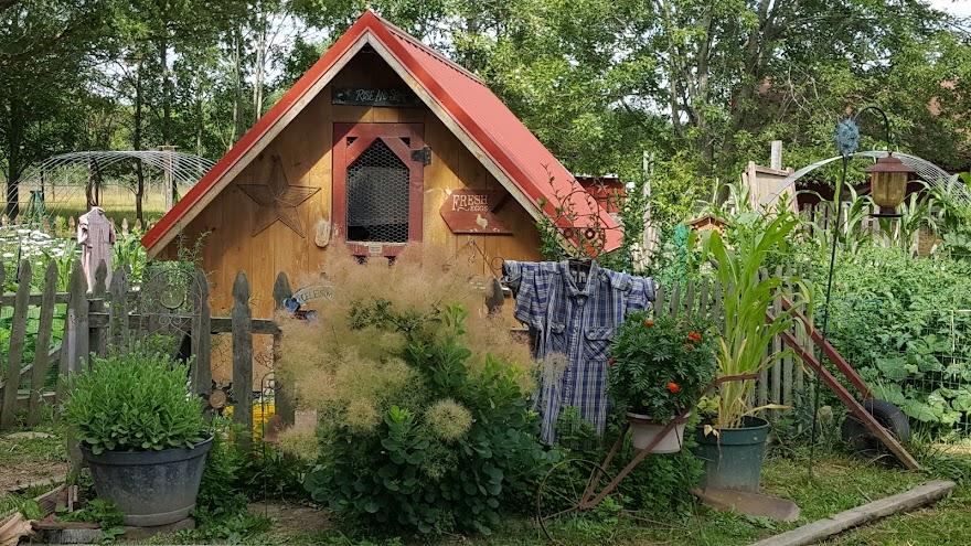 Harvest Thyme Homestead