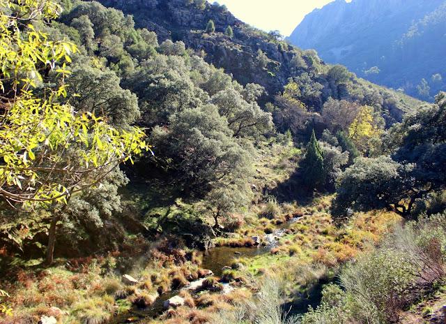Arroyo de los Torneros en Campillo de Deleitosa