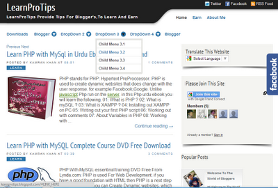 LearnProTips Template For Blogger
