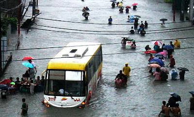 Typhoon Expectation