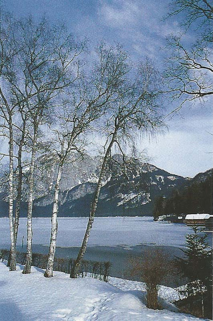 Cte Est Dec-Fev 2001-2002, frozen mountain lake as seen on linenandlavender.net