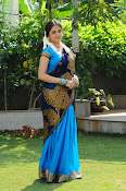 Sheena Shahabadi Latest Photos in saree-thumbnail-20