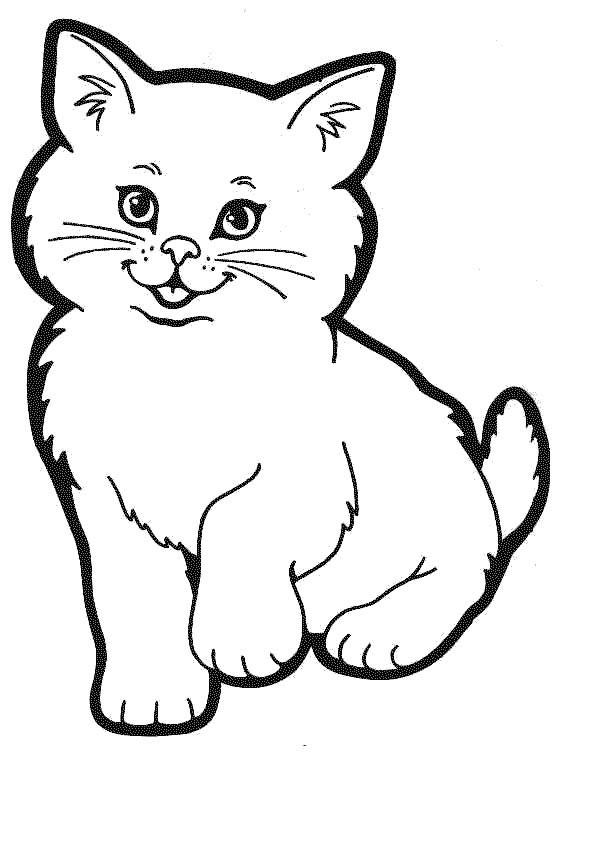 planse imagini colorat pisici pisica Desene Imagini de