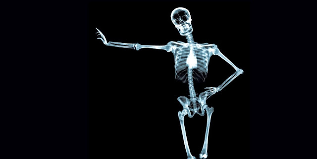 Esqueleto y tejido oseo