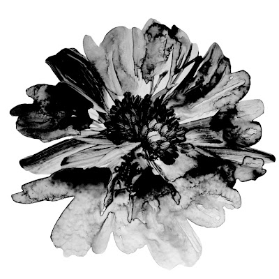 Flowers Watercolor by http://freebrush.blogspot.com