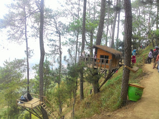 rumah pohon - malang