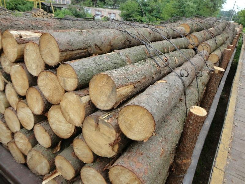 Il legno del futuro? È 'sottovuoto'