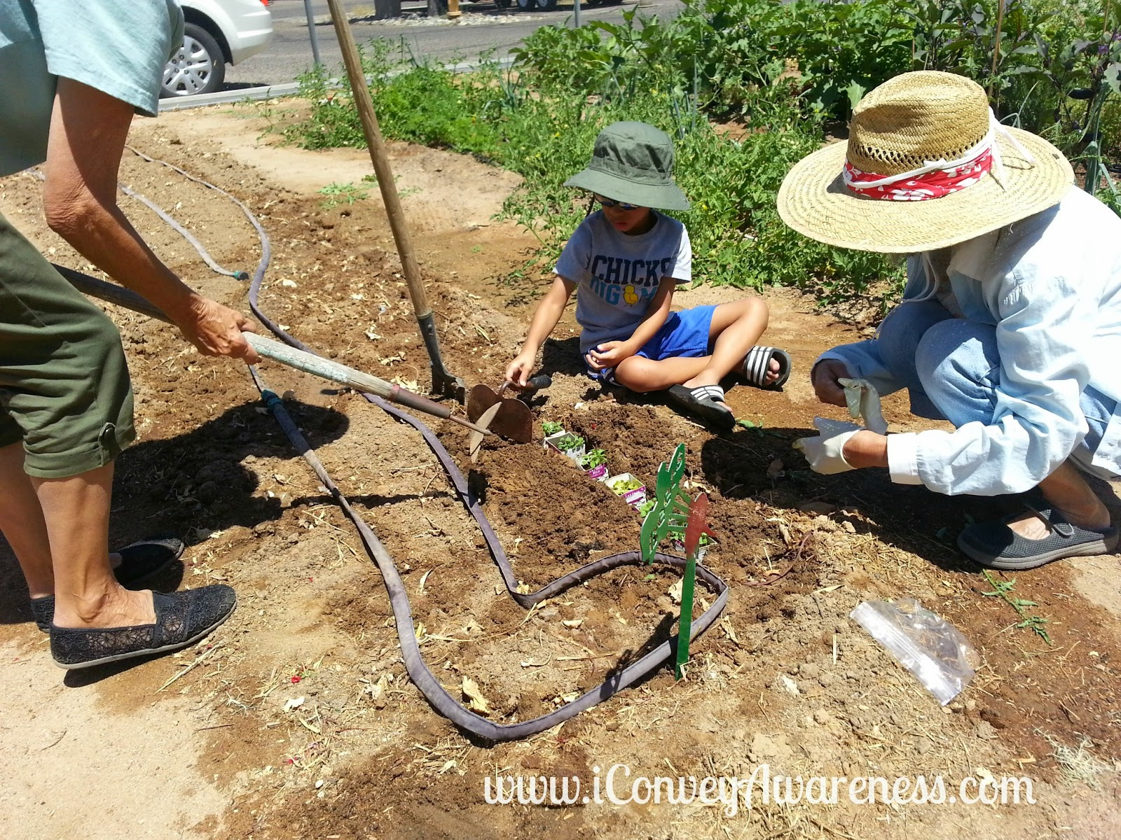 Conveying Awareness with Jessica David: Community Garden and More ...