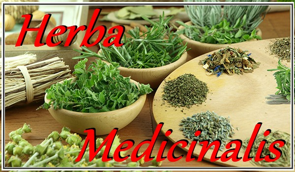 Herba Medicinalis