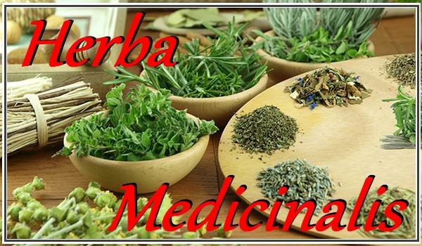 Herba Medicinalis