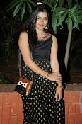 Pavani glamorous photos gallery-thumbnail-10