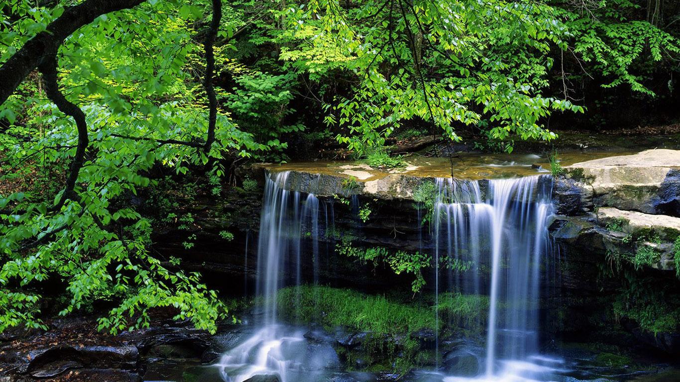 http://1.bp.blogspot.com/-8r28gf6SGu0/T-LG3qTBh4I/AAAAAAAAAfY/5JBkgevHB2U/s1600/green+nature+falls+images.jpg+%252816%2529.jpg