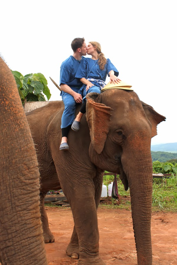 Elephant trekking at the Four Seasons Tented Camp Golden Triangle, Thailand