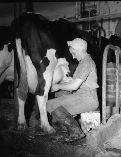 single women in dairy We have been helping single men and women from around the world meet for true love and marriage for over 40 years and have help over a half of a million men and woman meet for who are looking for love and marriage since 1974 it really does not get any better than this please enjoy our site aloha, cb staff.