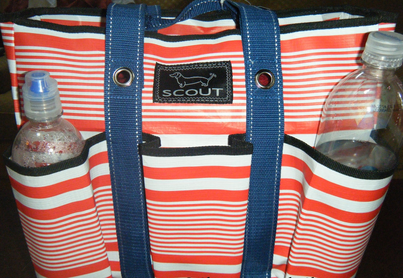 Shereen Travels Cheap: Review: Pocket Rocket Bag from Scout by ...