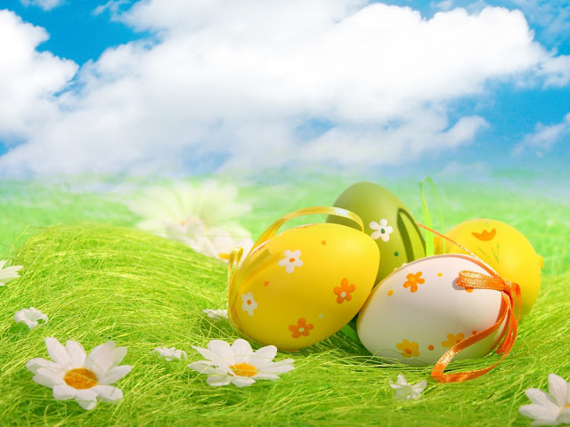 Easter Eggs,green grass and white flowers