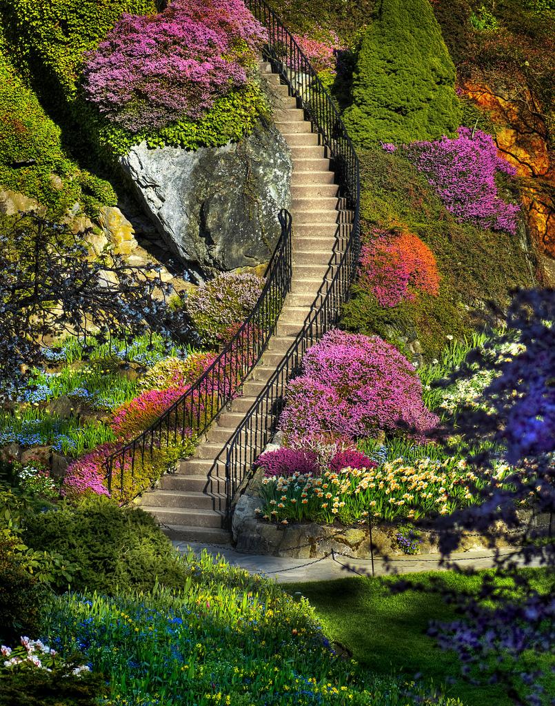 Ideagarden butchart gardens en vancouver for Jardines butchart