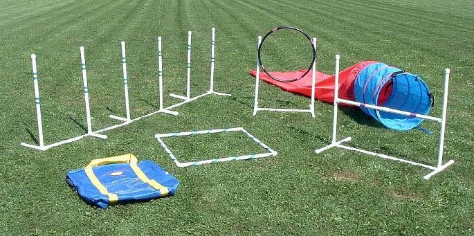 Agility Course For Dogs Agility-dog-training-supplies