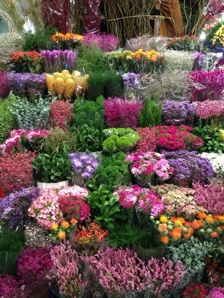 Un jard n lleno de flores mercados de abastos for Cuarto lleno de rosas