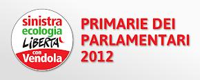 Primarie Parlamentari SEL