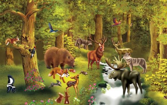 imagenes de animales que viven en el bosque - Animales Que Viven En Bosque Europeo Imagen de