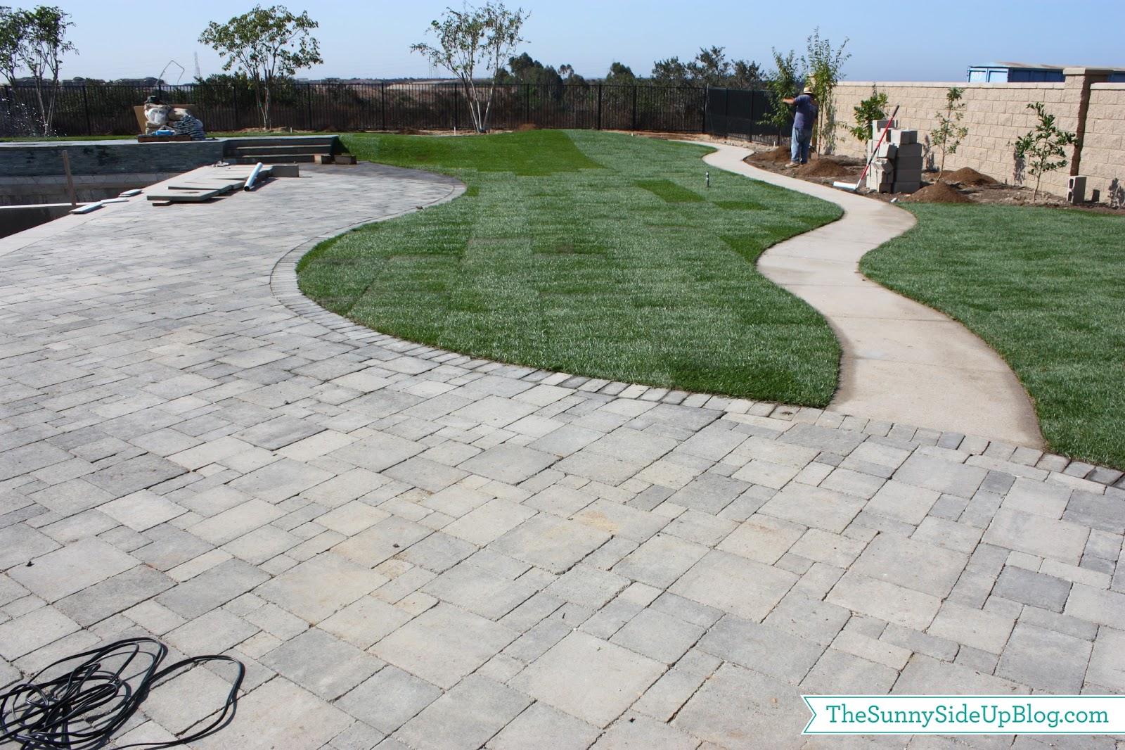 Backyard grass! - The Sunny Side Up Blog