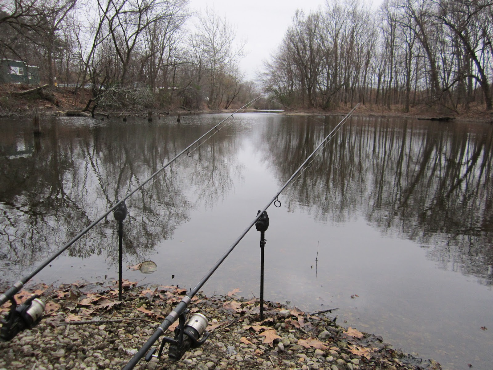 Rhode island carp fishing cold weather cools off carp fishing for Best weather for fishing