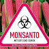 Hungría: Se acaba la paciencia y agricultores destruyen todos los cultivos de Monsanto.