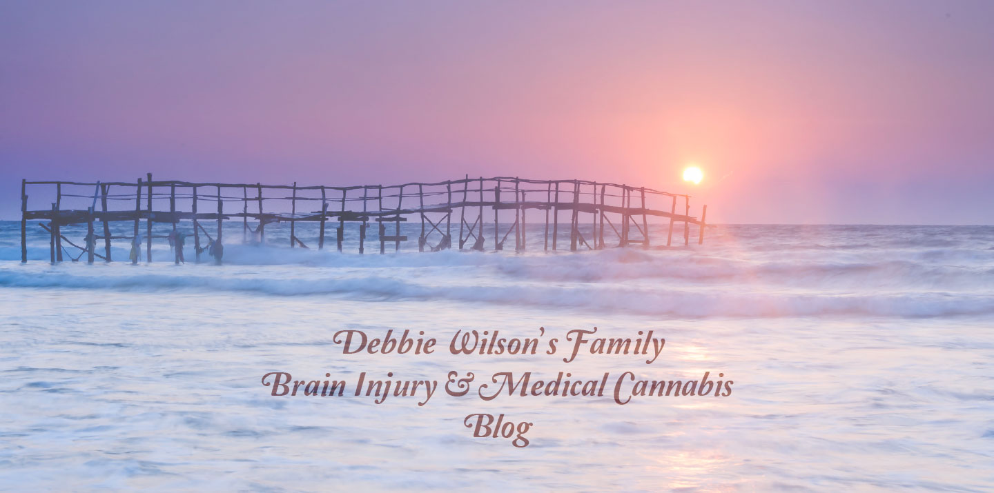 Debbie Wilson's Family Brain Injury and Medical Cannabis Blog