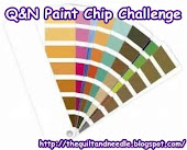 The Q&N Paint Chip Challenge