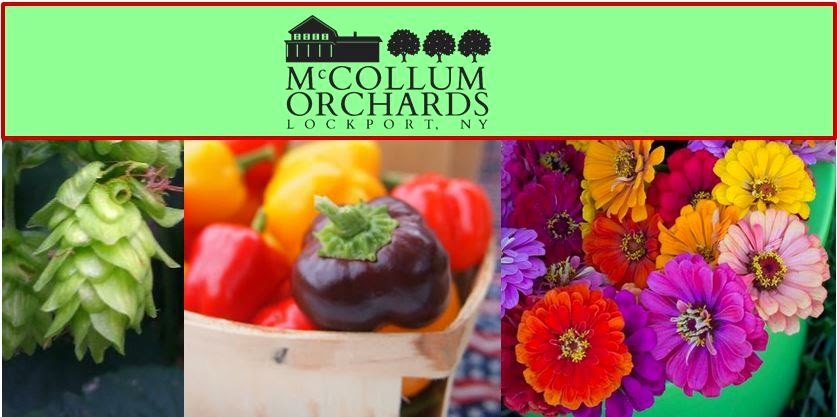 McCollum Orchards