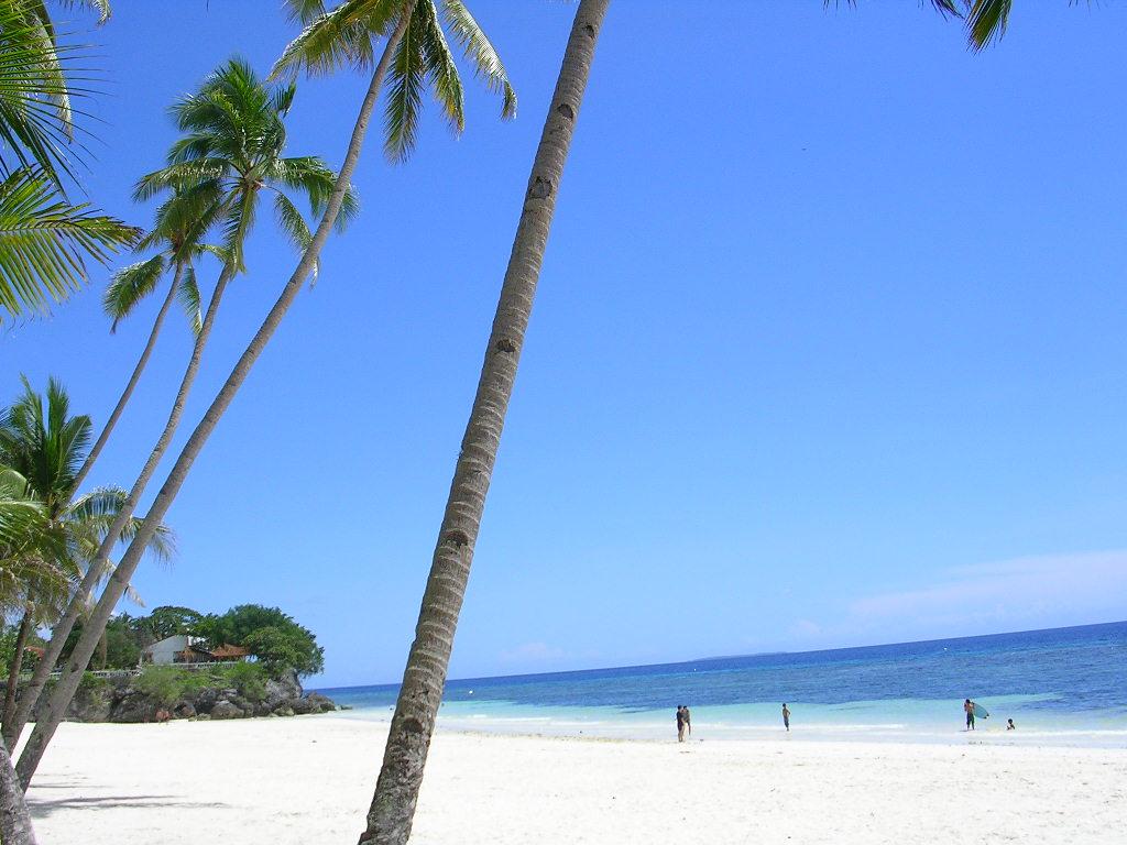 Panglao Island Philippines  city pictures gallery : Panglao Island BeachResort, Bohol, Philippines
