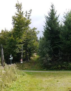 Mauzenstein am ansteigenden Weg im Hintergrund der Wegekreuzung