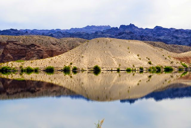 Reflection on Lake Mojave 038