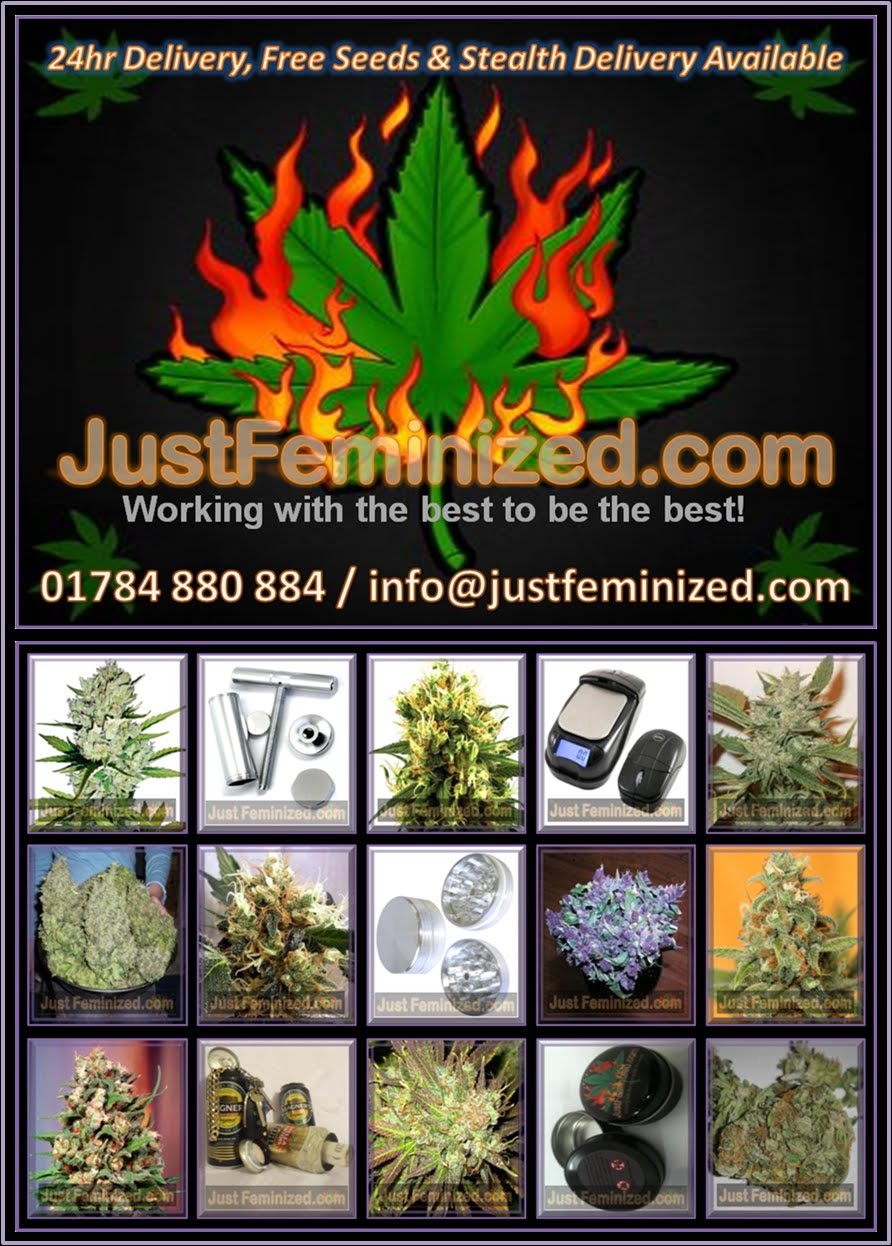 Just Feminized UK Seeds Bank