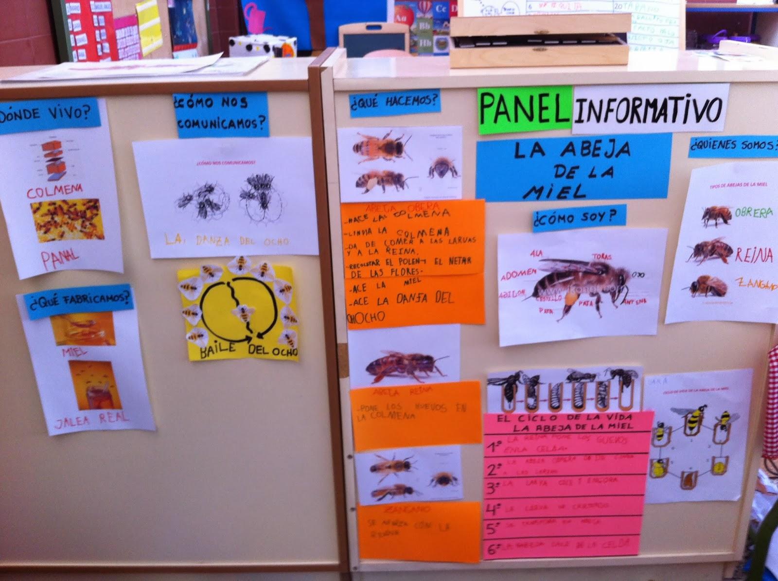 El sue o de ser panel informativo la abeja de la miel for Cuales son los pasos para realizar un periodico mural