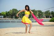 Kamna Jetmalani Photos-thumbnail-2