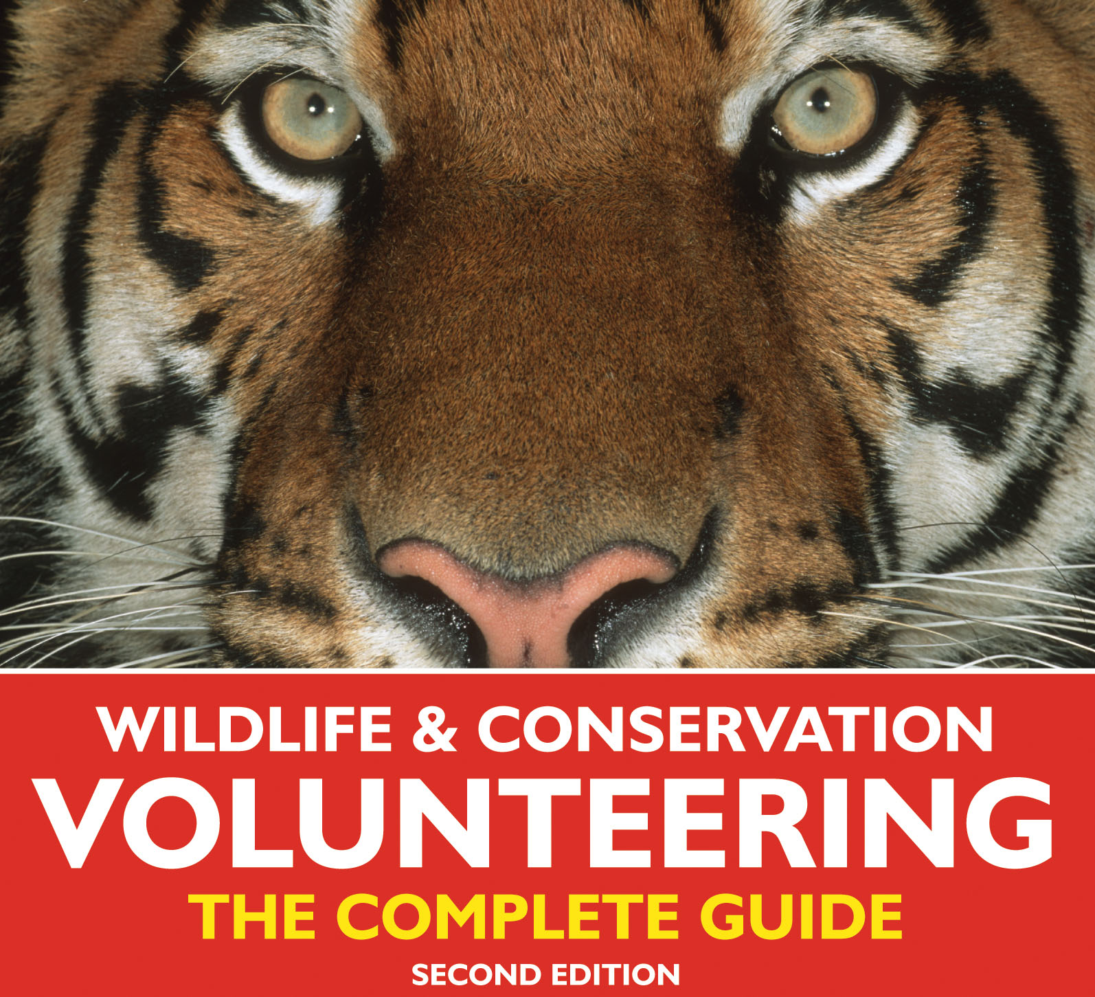 essay on wildlife protection in india Wildlife conservation in india 10 to protect the tiger and wildlife in india, the wildlife protection act and project tiger to haven't found the essay you.