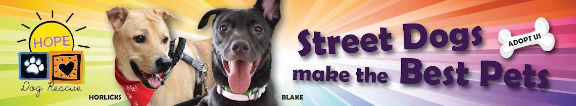 HOPE Dog Rescue