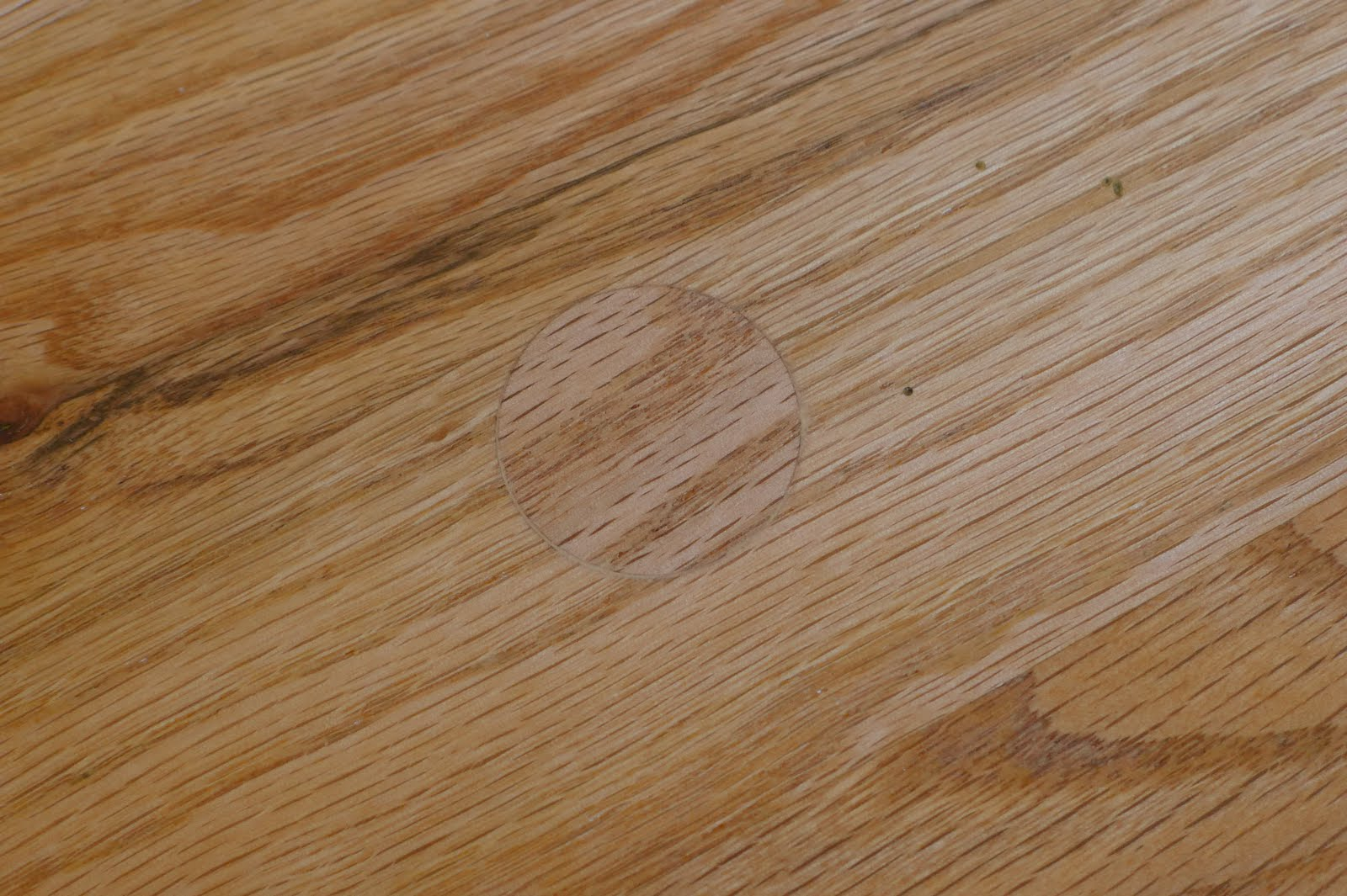 Projects oak hardwood floor repair for Wood floor repair