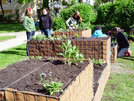Suttnerblog Okostrom Klimaschutz Urban Gardening Das Hochbeet Im