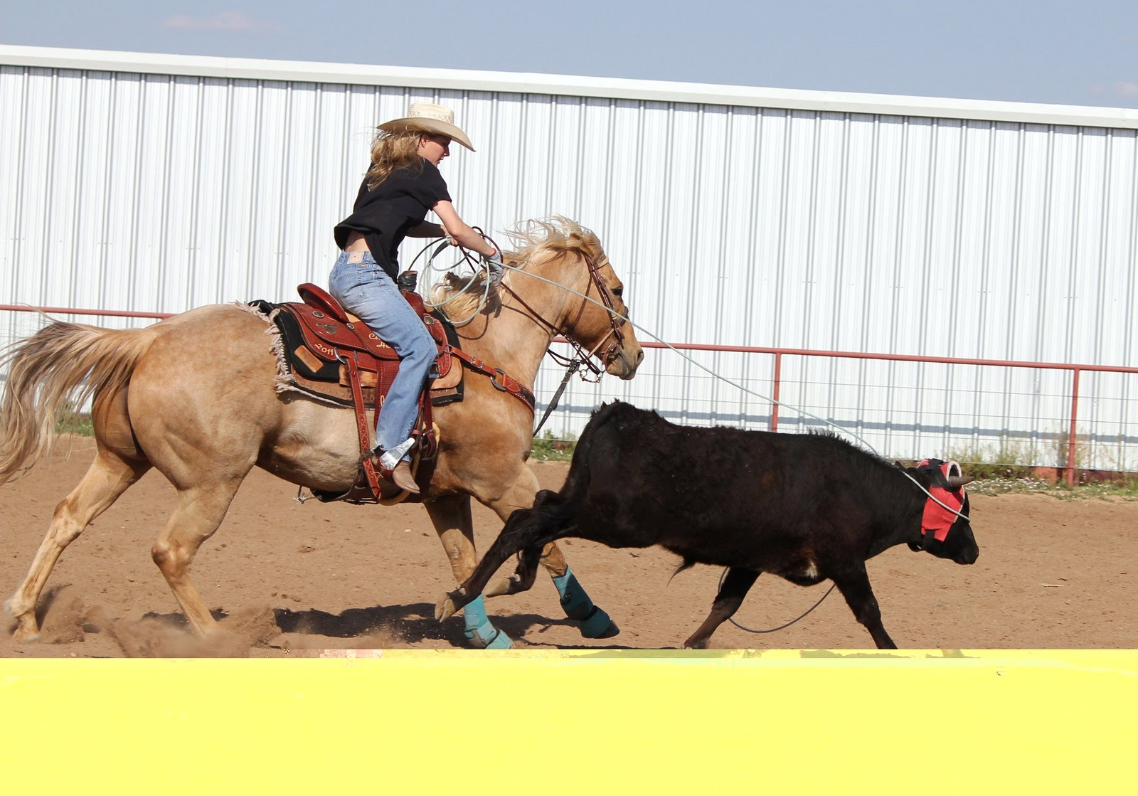 Dumas Woman Will Rope In World Series Team Roping in Las Vegas