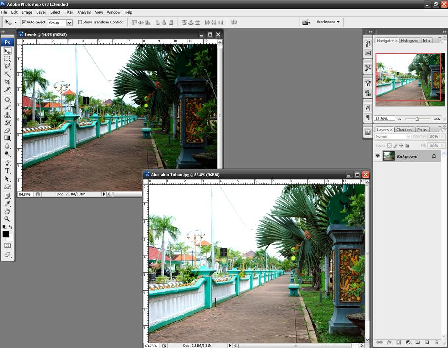 Cara Mencerahkan Foto dengan Photoshop